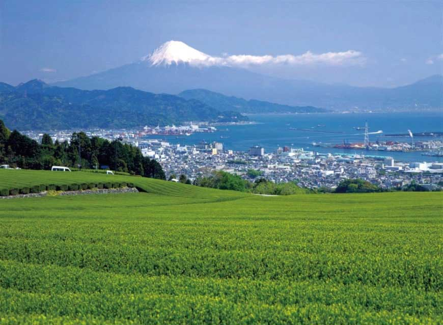 (Mt.Fuji seen from Nihon-daira)